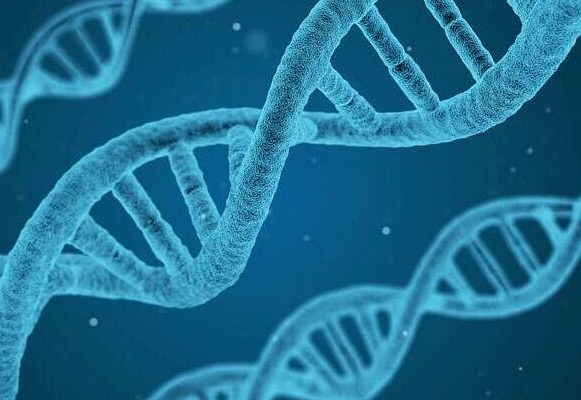 Advancing DNA analysis through RFID